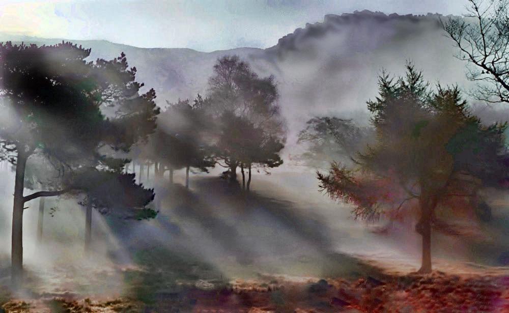 chew-piece-early-mist