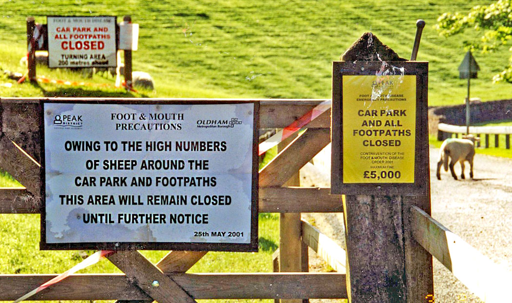 foot-and-mouth-notices