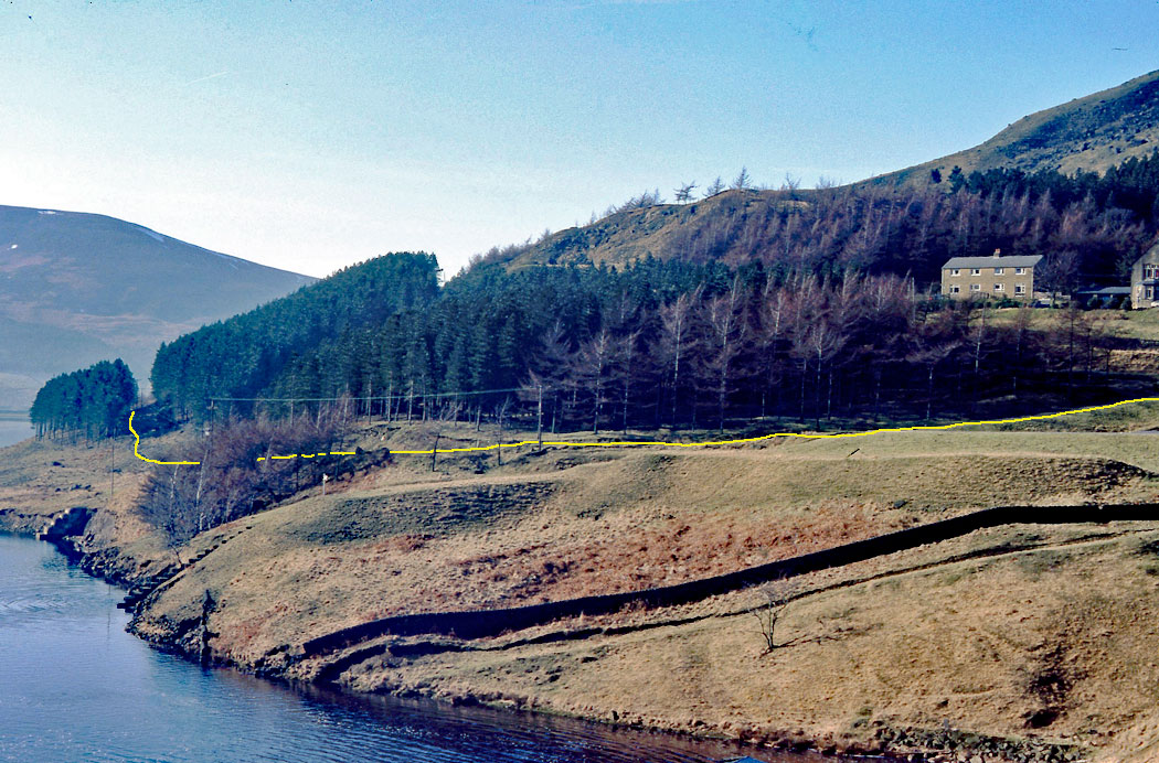 Binn-Green-houses-circa-1984