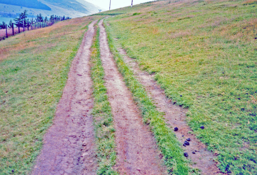 WEB-three-lane-pathway