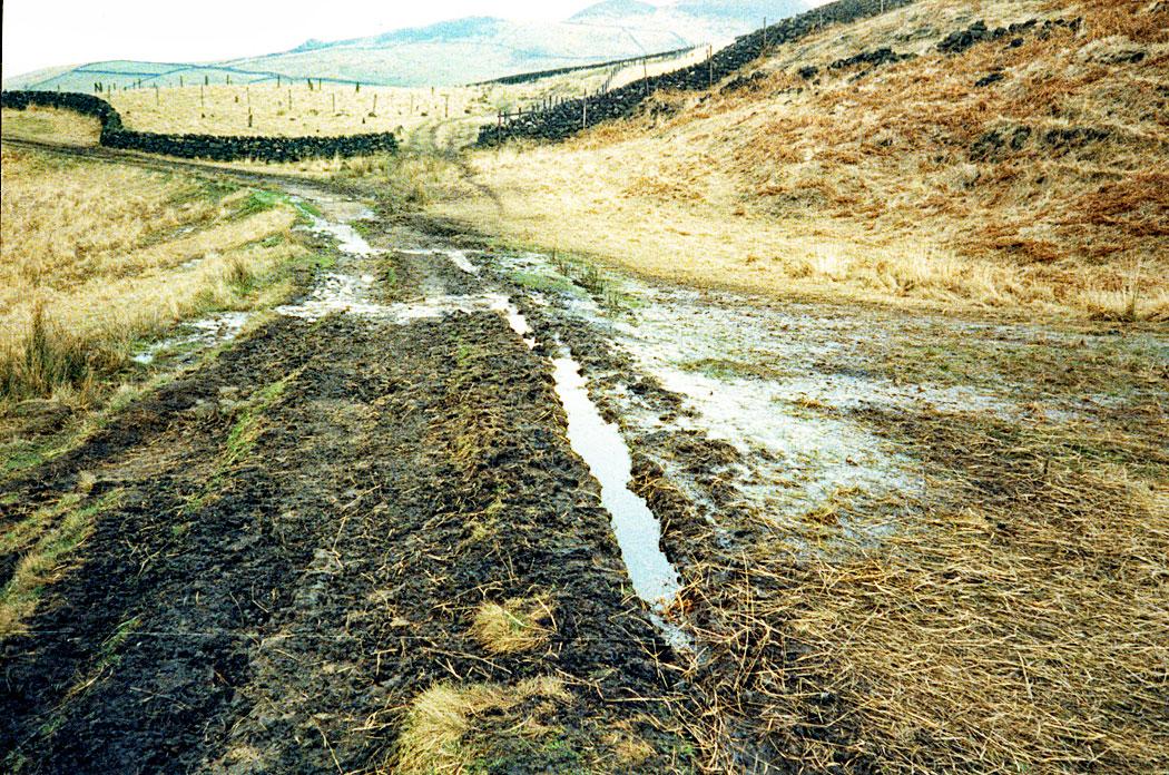 muddy-path-circa-1980s